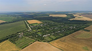 Aerial photo of Vilne.jpg