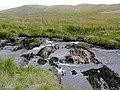 Afon Camddwr near Maesglas, Ceredigion - geograph.org.uk - 1515357.jpg