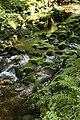Afon Llyfnant - geograph.org.uk - 565874.jpg