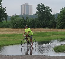 A man riding a bicycle through a flooded area in a park.