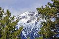 Agassiz Peak (4462261161).jpg