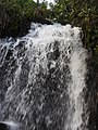 Agathiyar falls-2-mundanthurai-tirunelveli-India.jpg