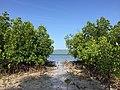 Alibijaban Island, San Andres, Quezon Province, Philippines (5).jpg