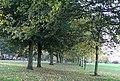 Allesley Hall Drive - geograph.org.uk - 269776.jpg