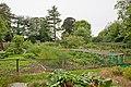 Allotment Gardens next to Hursley Cemetery - geograph.org.uk - 955993.jpg