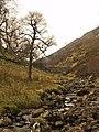 Allt Gleann nan Eun - geograph.org.uk - 405093.jpg