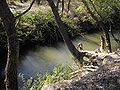 Alma river.jpg