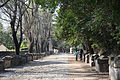 Alyscamps Arles 3.jpg
