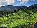 Ambilipitiya rural areas.jpg