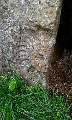 Stoney Littleton Long Barrow - Image: Ammonite at Stoney Littleton Long Barrow