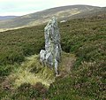 An upright stone above Coire nan Dun - geograph.org.uk - 566308.jpg