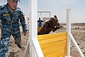 Anbar Police stand up K-9 unit DVIDS272342.jpg