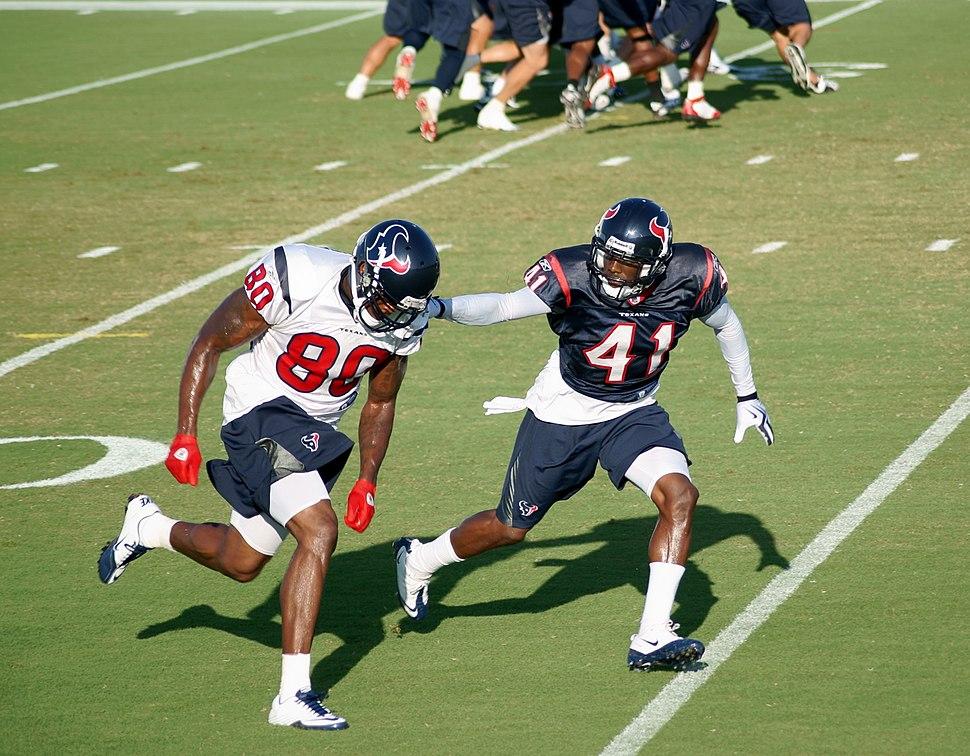 Andre Johnson of Houston Texans