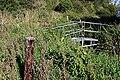 Anglers' Footbridge - geograph.org.uk - 2169845.jpg