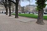 Arbres rond-point des Champs-Élysées-Marcel-Dassault, Paris 8e.jpg
