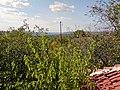 Armenskite lozya, 7200 Razgrad, Bulgaria - panoramio - penkopp (2).jpg