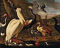 Associate of Melchior de Hondecoeter - A pelican and other birds by the water.jpg