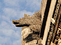 Auberge of the lingua of France - Gargoyle 07.jpg