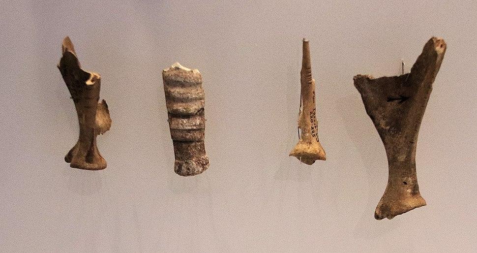 Aurignacian Culture Incised Animal Bones Hayonim Cave 28000 BP