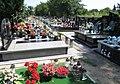 Błonie. Cmentarz Św, Trójcy Foto 03.jpg