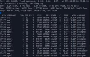 Top (software) - Image: BSD unix top plain