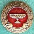 Badge Колывань.jpg