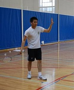 meaning of badminton