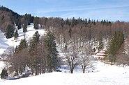 Balmberg schneeschuhlaufen seniorweb2009 024