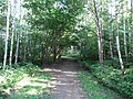 Baltupiai, Vilnius, Lithuania - panoramio (99).jpg
