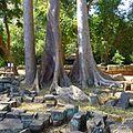 Baphuon, Angkor, Siem Reap, Cambodia - panoramio (10).jpg
