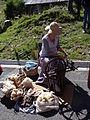 Barèges - Fête des bergers 15 Aout 2014 - Travail de la laine 04.JPG