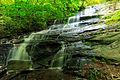 Barnett Branch Trail Waterfall - panoramio.jpg