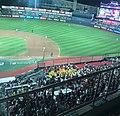 Baseball Cheering .jpg