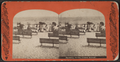 Bathing scene, Coney Island, from Robert N. Dennis collection of stereoscopic views 2.png