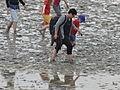 Bay of Mont Saint-Michel - low tide - walking on the mud 05.JPG