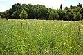Beislovenpark Zottegem 12.jpg
