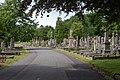 Belfast City Cemetery (32088568758).jpg