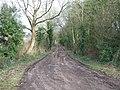 Belvidere Road, Exeter - geograph.org.uk - 1166942.jpg