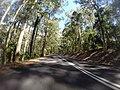 Benandarah NSW 2536, Australia - panoramio (16).jpg