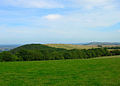 Bignor Hill - geograph.org.uk - 236552.jpg