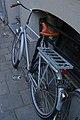 Bike (204529080).jpg
