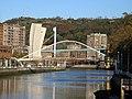 Bilbao-Puente Zubizuri-11 207.jpg