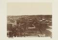 """Bild från familjen von Hallwyls resa genom Algeriet och Tunisien, 1889-1890. """"Sidi Okba."""" - Hallwylska museet - 91960.tif"""