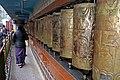 BirG088-Dharamsala.jpg