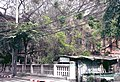 Bkk sipraya chinese house 02.JPG