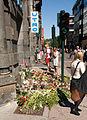 Blomsterhav i Akersgata.jpg
