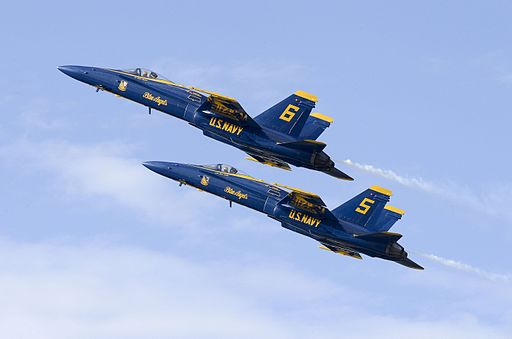 Blue Angels Homecoming Air Show 141108-N-WJ386-488