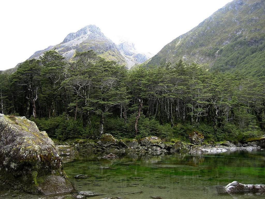 New Zealand Wikipedia: File:Blue Lake Nelson New Zealand.jpg