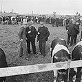Boeren of veehandelaren, Bestanddeelnr 900-8527.jpg