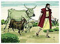 Book of Genesis Chapter 15-6 (Bible Illustrations by Sweet Media).jpg